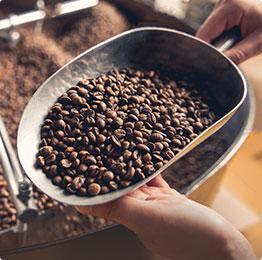 Купить кофе 100 arabica beans for sale